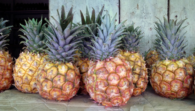 pineapples_web