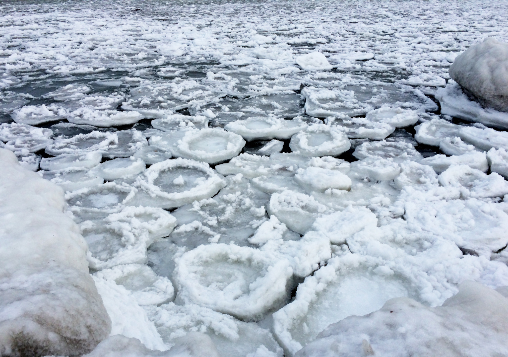 icedisks_closeup_web